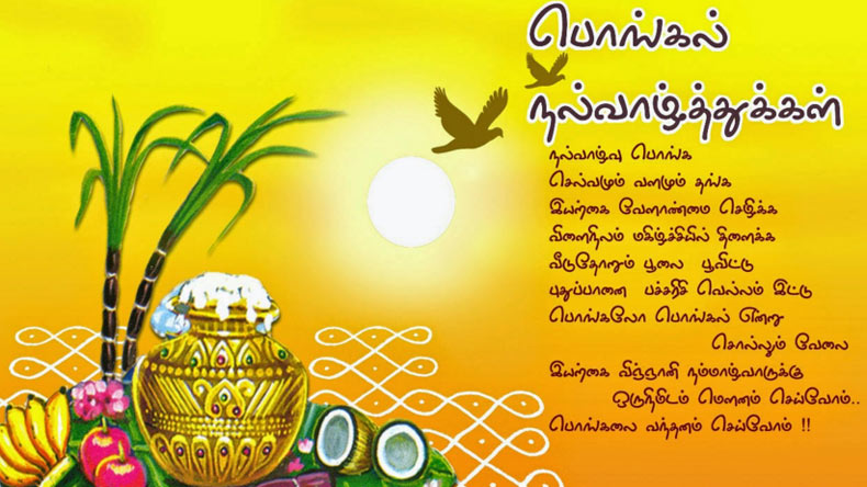 Pongal messages and wishes in Tamil for 2018: WhatsApp messages
