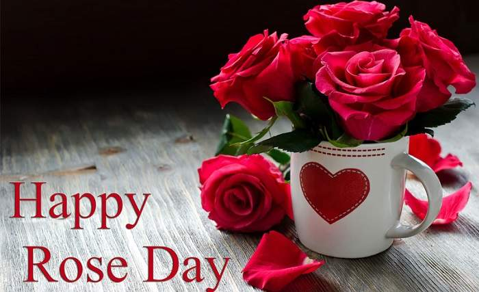 Happy Rose Day, Happy Rose Day wishes in English, Happy Rose Day WhatsApp messages, Happy Rose Day wishes and greetings, Rose Day Facebook posts, Rose Day, Happy Rose Day 2018, Rose Day 2018, Happy Rose Day 2018 date, what is Rose Day, Happy Rose Day history , Happy Rose Day wishes , Happy Rose Day greetings, Happy Rose Day images, Happy Rose Day photos , Happy Rose Day quotes
